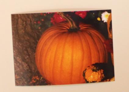 language-builder-nouns-2-round-orange-pumpkin-card