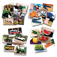 4-categories-of-cards-animals-clothing-food-and-vehicles