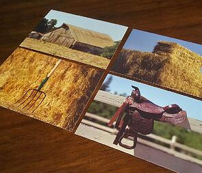 hay-pitchfork-saddle-and-barn-picture-noun-cards-2