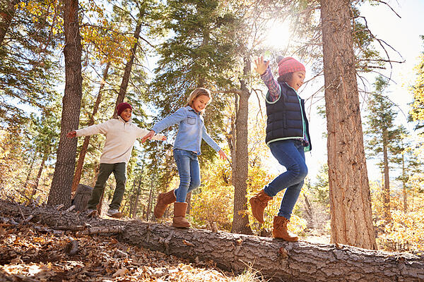 children with autism walking in woods on a log developing gross motor skills