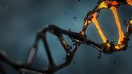 DNA-mutation-autism.jpg
